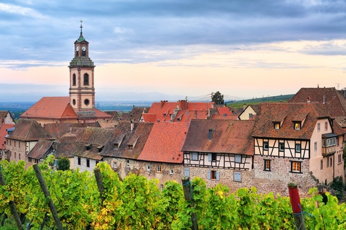 Alsace French Wine Region